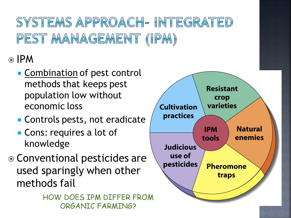  IPM  Combination of pest control methods that keeps pest population low without economic loss  Controls pests, not eradicate  Cons: requires a lo