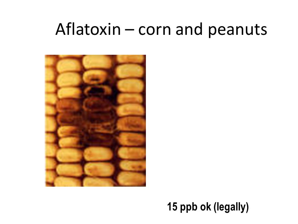 Aflatoxin – corn and peanuts 15 ppb ok (legally)