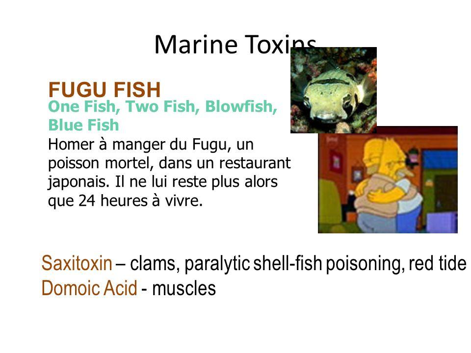 Marine Toxins FUGU FISH One Fish, Two Fish, Blowfish, Blue Fish Homer à manger du Fugu, un poisson mortel, dans un restaurant japonais.