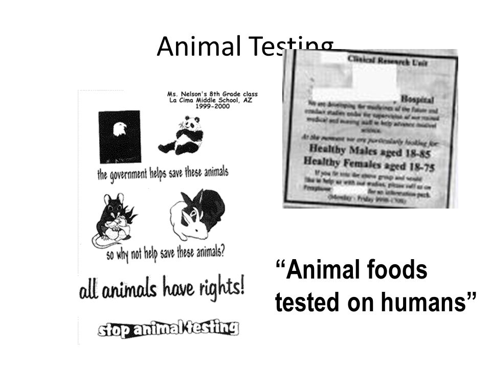 Animal foods tested on humans