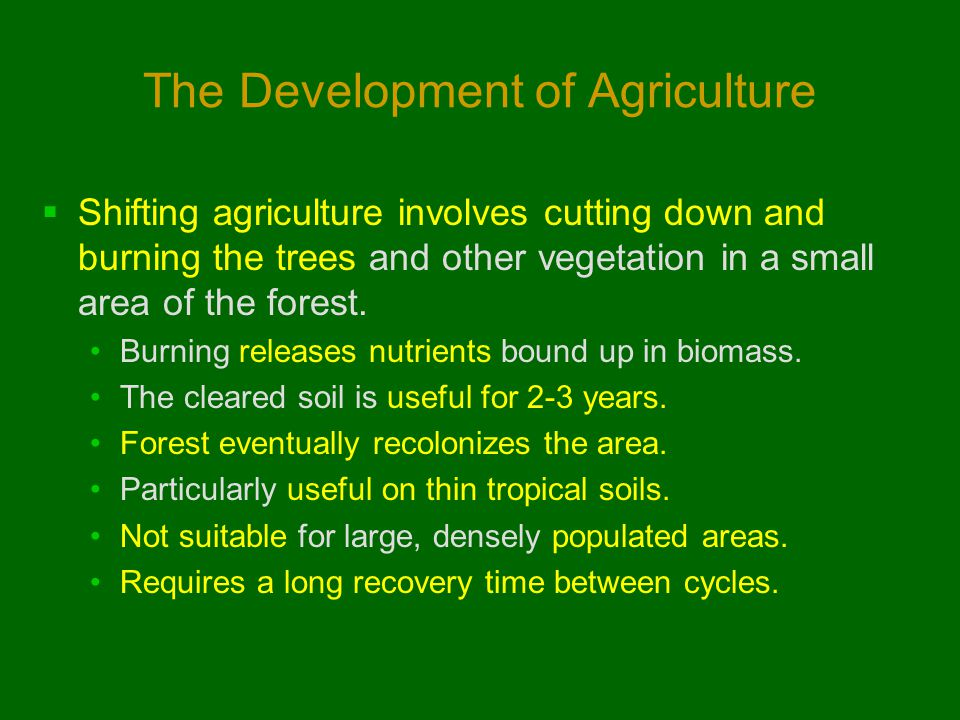 The Development of Agriculture  Shifting agriculture involves cutting down and burning the trees and other vegetation in a small area of the forest.