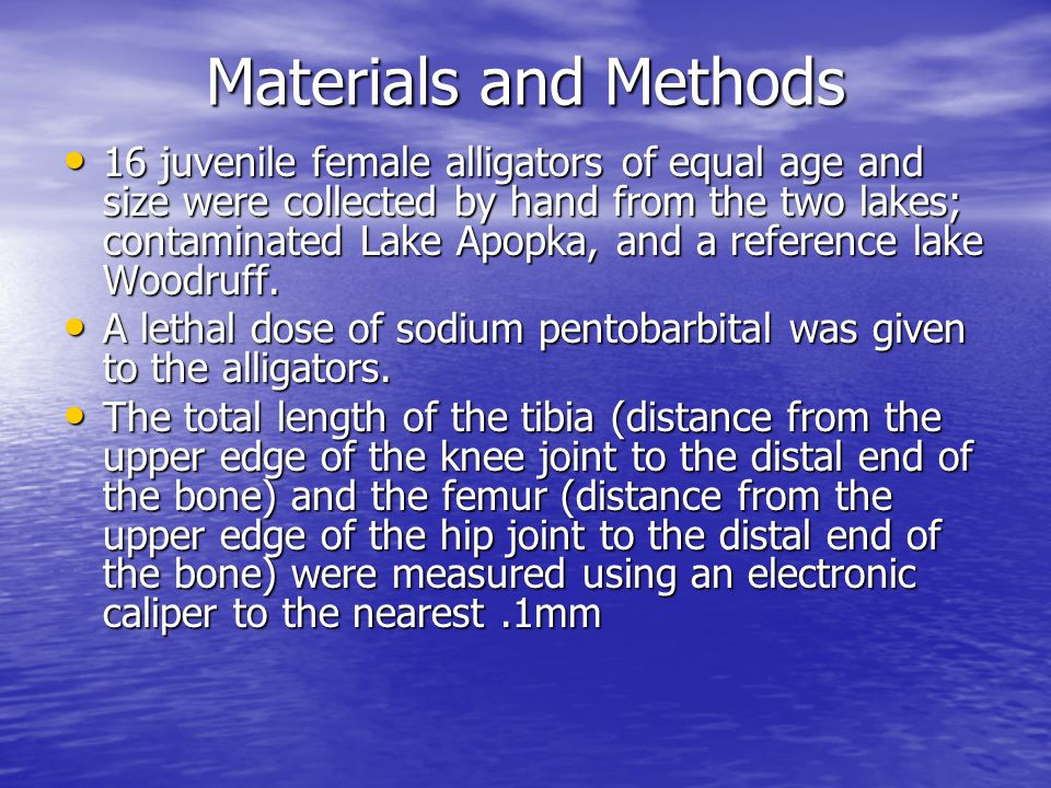 Materials and Methods 16 juvenile female alligators of equal age and size were collected by hand from the two lakes; contaminated Lake Apopka, and a reference lake Woodruff.