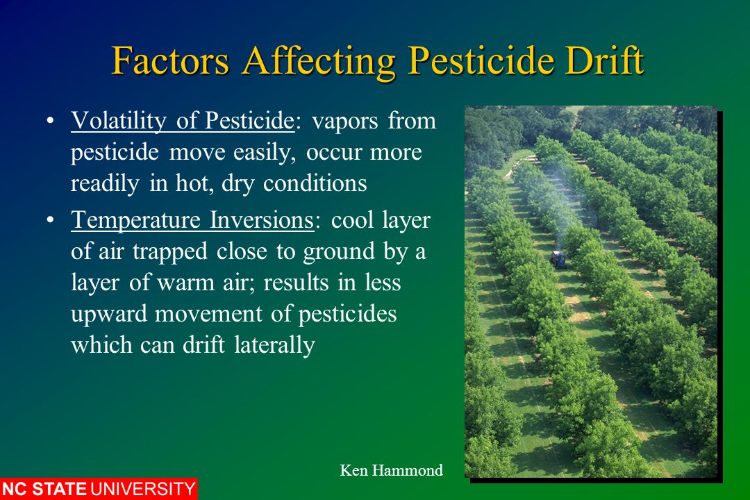 Factors Affecting Pesticide Drift Volatility of Pesticide: vapors from pesticide move easily, occur more readily in hot, dry conditions Temperature Inversions: cool layer of air trapped close to ground by a layer of warm air; results in less upward movement of pesticides which can drift laterally Ken Hammond