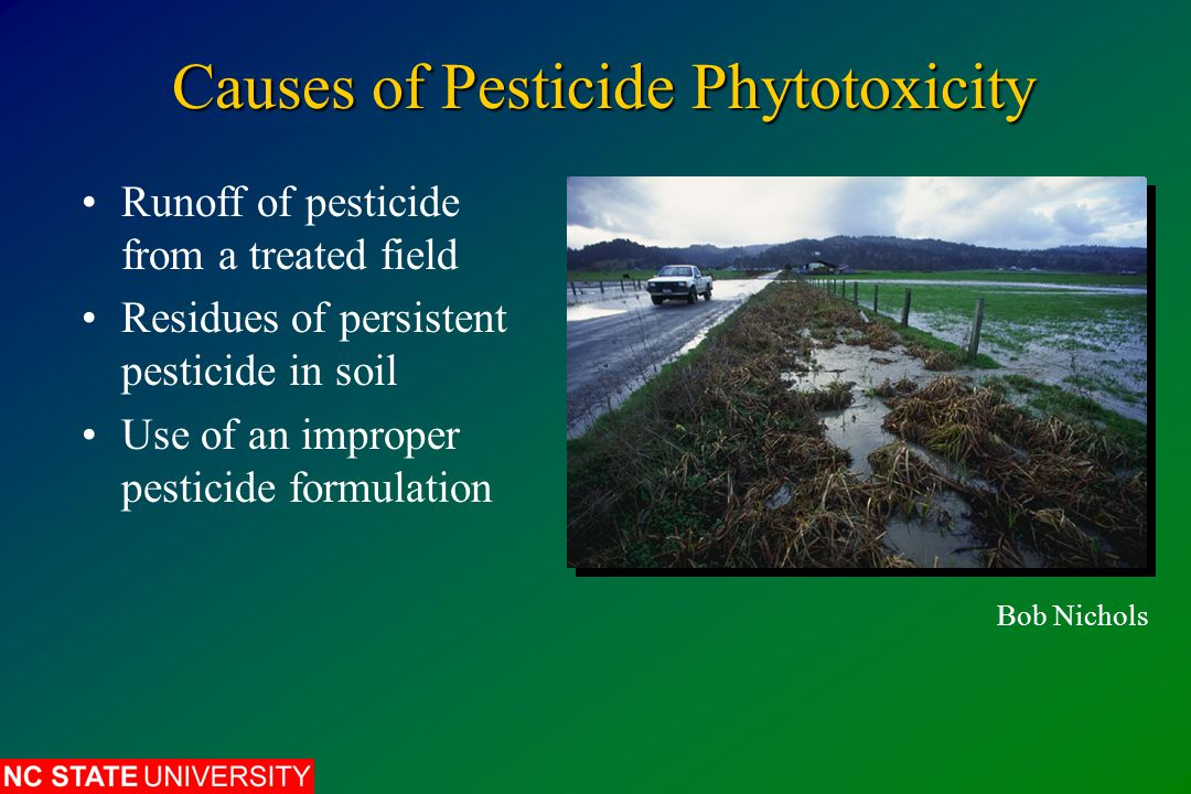Causes of Pesticide Phytotoxicity Runoff of pesticide from a treated field Residues of persistent pesticide in soil Use of an improper pesticide formu