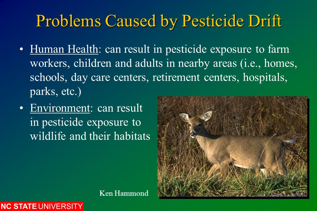Problems Caused by Pesticide Drift Human Health: can result in pesticide exposure to farm workers, children and adults in nearby areas (i.e., homes, s