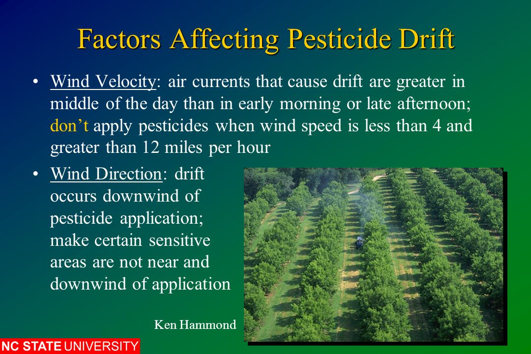Factors Affecting Pesticide Drift Wind Velocity: air currents that cause drift are greater in middle of the day than in early morning or late afternoon; don't apply pesticides when wind speed is less than 4 and greater than 12 miles per hour Wind Direction: drift occurs downwind of pesticide application; make certain sensitive areas are not near and downwind of application Ken Hammond