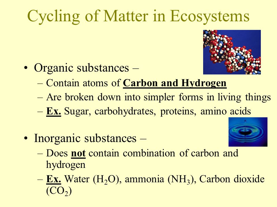Cycling of Matter in Ecosystems Organic substances – –Contain atoms of Carbon and Hydrogen –Are broken down into simpler forms in living things –Ex.