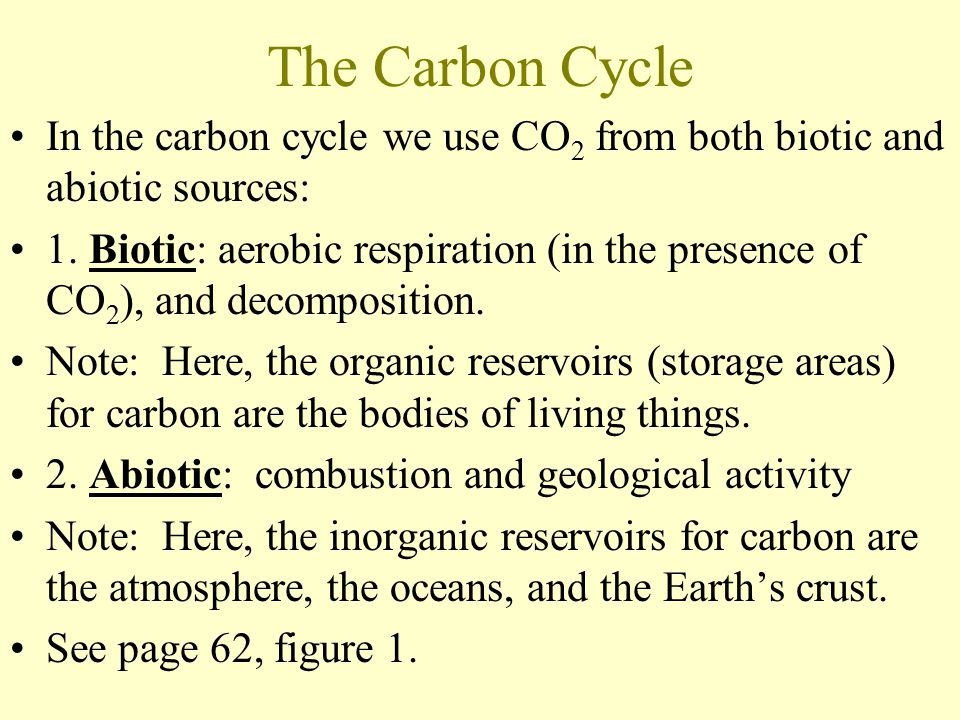 The Carbon Cycle In the carbon cycle we use CO 2 from both biotic and abiotic sources: 1.
