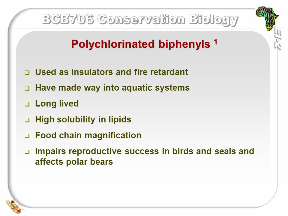   Used as insulators and fire retardant   Have made way into aquatic systems   Long lived   High solubility in lipids   Food chain magnification   Impairs reproductive success in birds and seals and affects polar bears Polychlorinated biphenyls 1