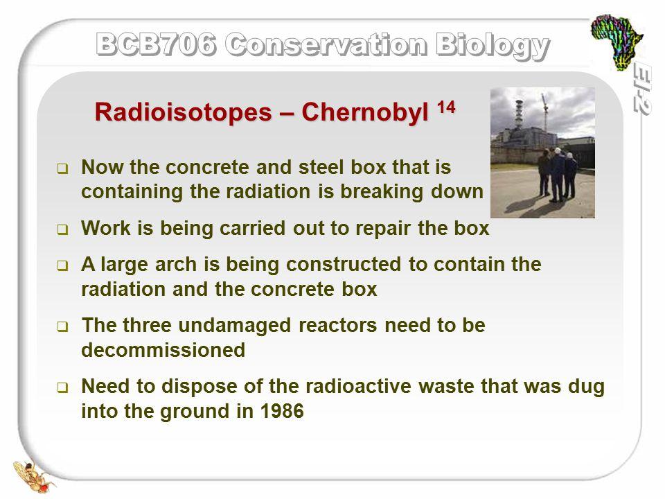   Now the concrete and steel box that is containing the radiation is breaking down   Work is being carried out to repair the box   A large arch is being constructed to contain the radiation and the concrete box   The three undamaged reactors need to be decommissioned   Need to dispose of the radioactive waste that was dug into the ground in 1986 Radioisotopes – Chernobyl 14