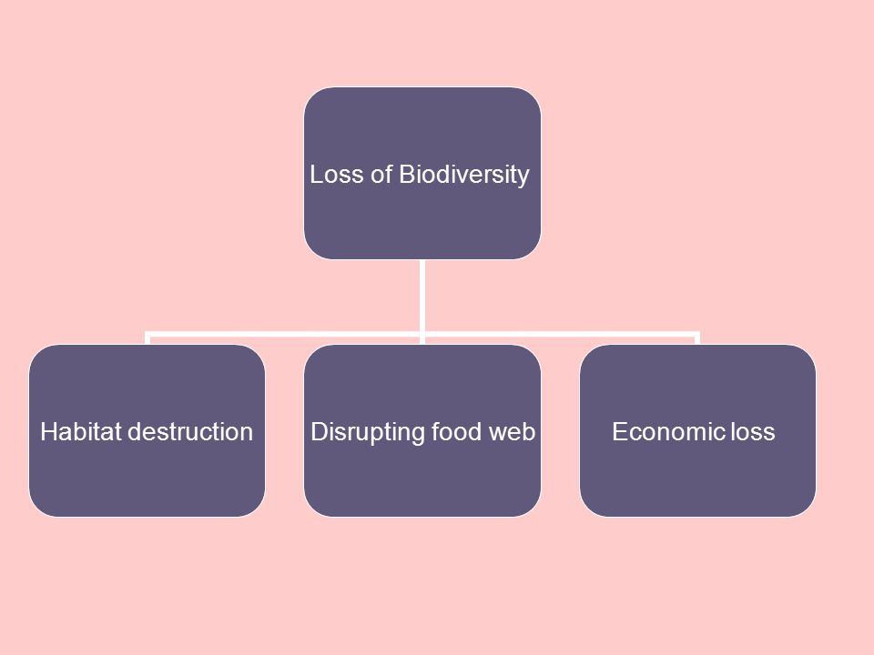 Loss of Biodiversity Habitat destruction Disrupting food web Economic loss