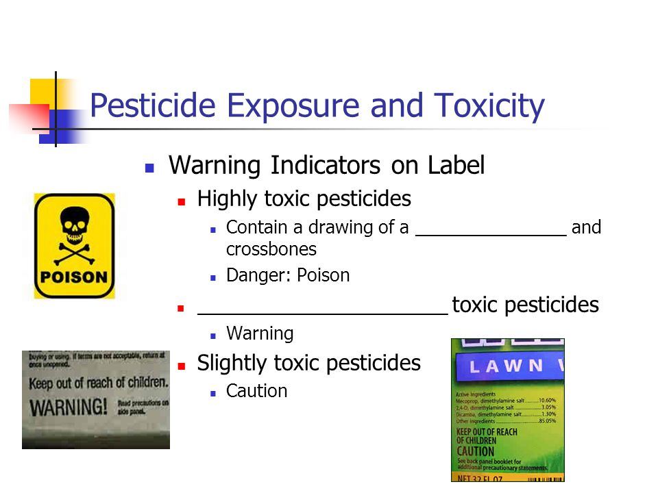 Pesticide Exposure and Toxicity Warning Indicators on Label Highly toxic pesticides Contain a drawing of a _______________ and crossbones Danger: Pois