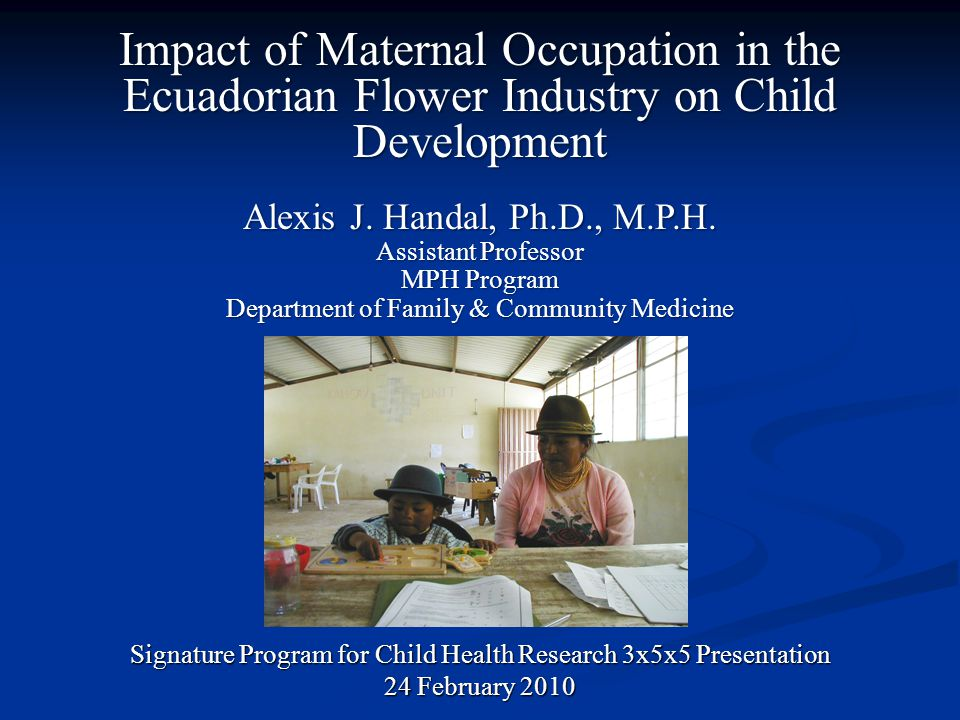 Impact of Maternal Occupation in the Ecuadorian Flower Industry on Child Development Signature Program for Child Health Research 3x5x5 Presentation 24 February 2010 Alexis J.