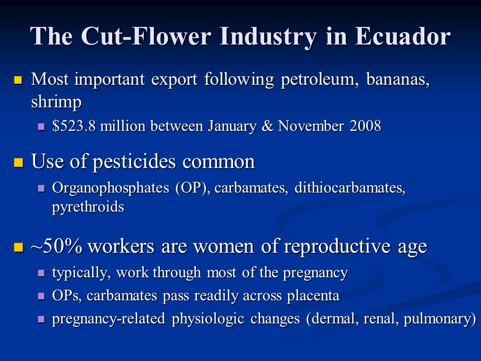 The Cut-Flower Industry in Ecuador Most important export following petroleum, bananas, shrimp Most important export following petroleum, bananas, shrimp $523.8 million between January & November 2008 $523.8 million between January & November 2008 Use of pesticides common Use of pesticides common Organophosphates (OP), carbamates, dithiocarbamates, pyrethroids Organophosphates (OP), carbamates, dithiocarbamates, pyrethroids ~50% workers are women of reproductive age ~50% workers are women of reproductive age typically, work through most of the pregnancy typically, work through most of the pregnancy OPs, carbamates pass readily across placenta OPs, carbamates pass readily across placenta pregnancy-related physiologic changes (dermal, renal, pulmonary) pregnancy-related physiologic changes (dermal, renal, pulmonary)