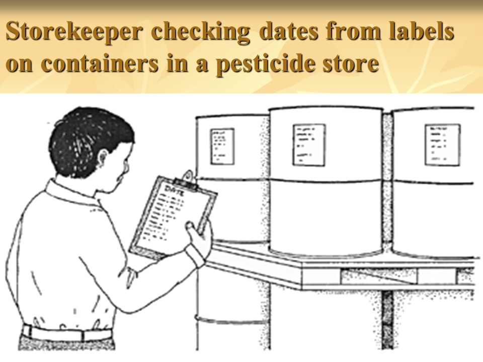 Storekeeper checking dates from labels on containers in a pesticide store