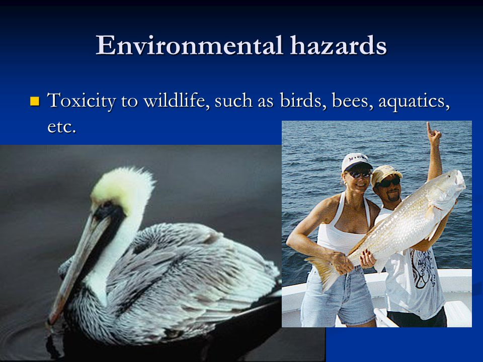 Environmental hazards Toxicity to wildlife, such as birds, bees, aquatics, etc.