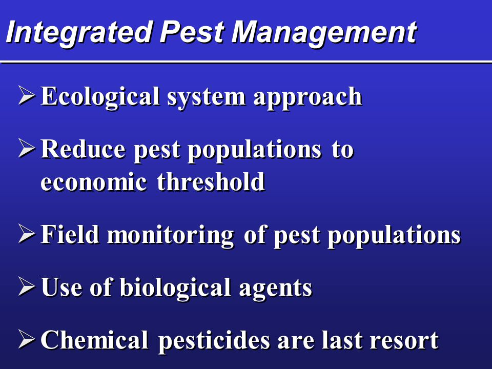 Integrated Pest Management  Ecological system approach  Reduce pest populations to economic threshold  Field monitoring of pest populations  Use of biological agents  Chemical pesticides are last resort