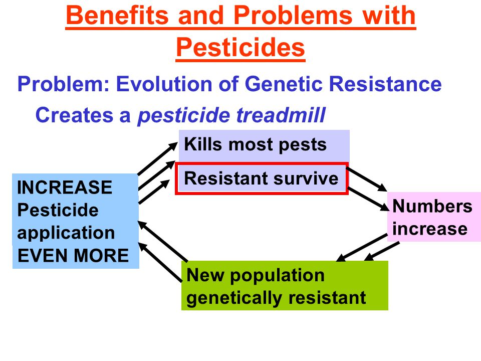 Benefits and Problems with Pesticides Problem: Evolution of Genetic Resistance Creates a pesticide treadmill Pesticide application Kills most pests Re