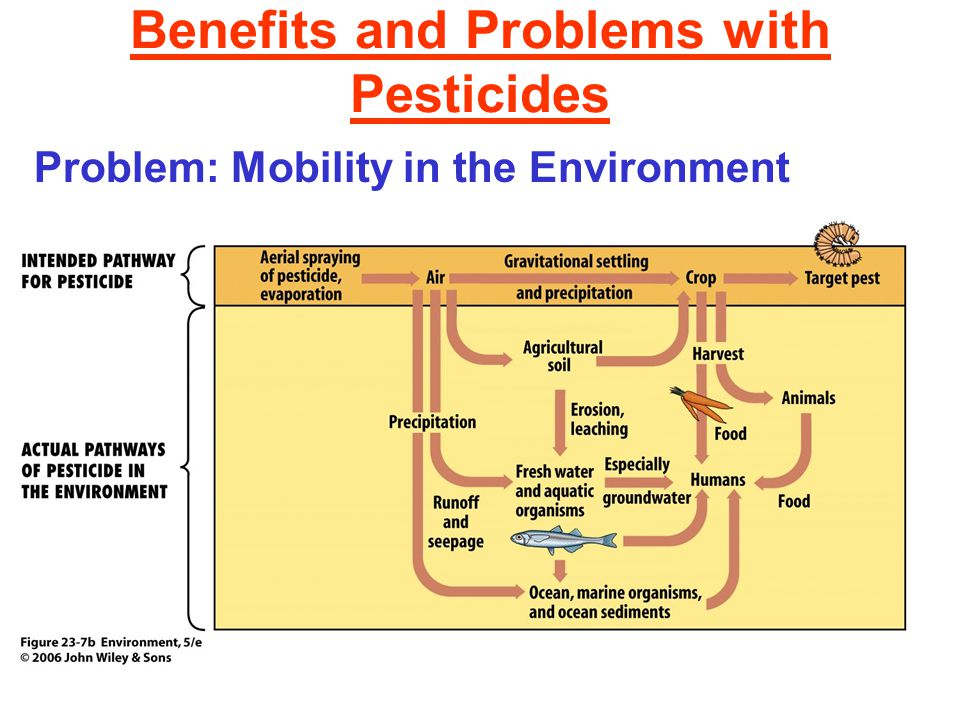 Benefits and Problems with Pesticides Problem: Mobility in the Environment