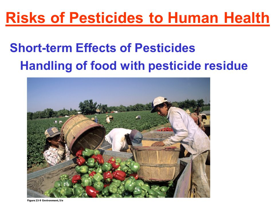 Risks of Pesticides to Human Health Short-term Effects of Pesticides Handling of food with pesticide residue