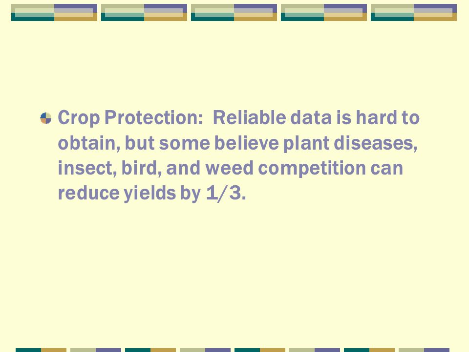 Crop Protection: Reliable data is hard to obtain, but some believe plant diseases, insect, bird, and weed competition can reduce yields by 1/3.