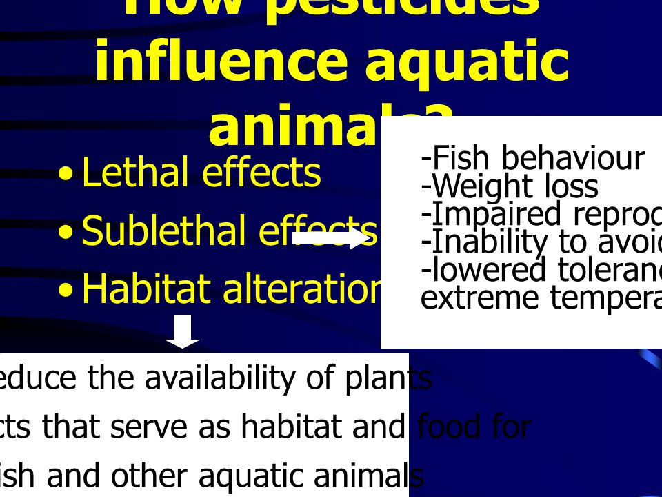 How pesticides influence aquatic animals.