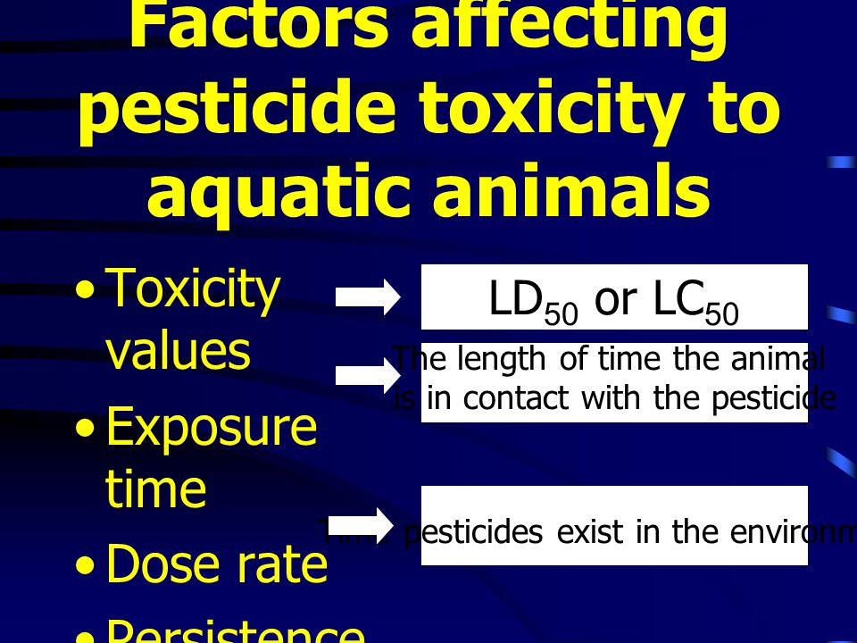 Factors affecting pesticide toxicity to aquatic animals Toxicity values Exposure time Dose rate Persistence LD 50 or LC 50 The length of time the animal is in contact with the pesticide Time pesticides exist in the environment