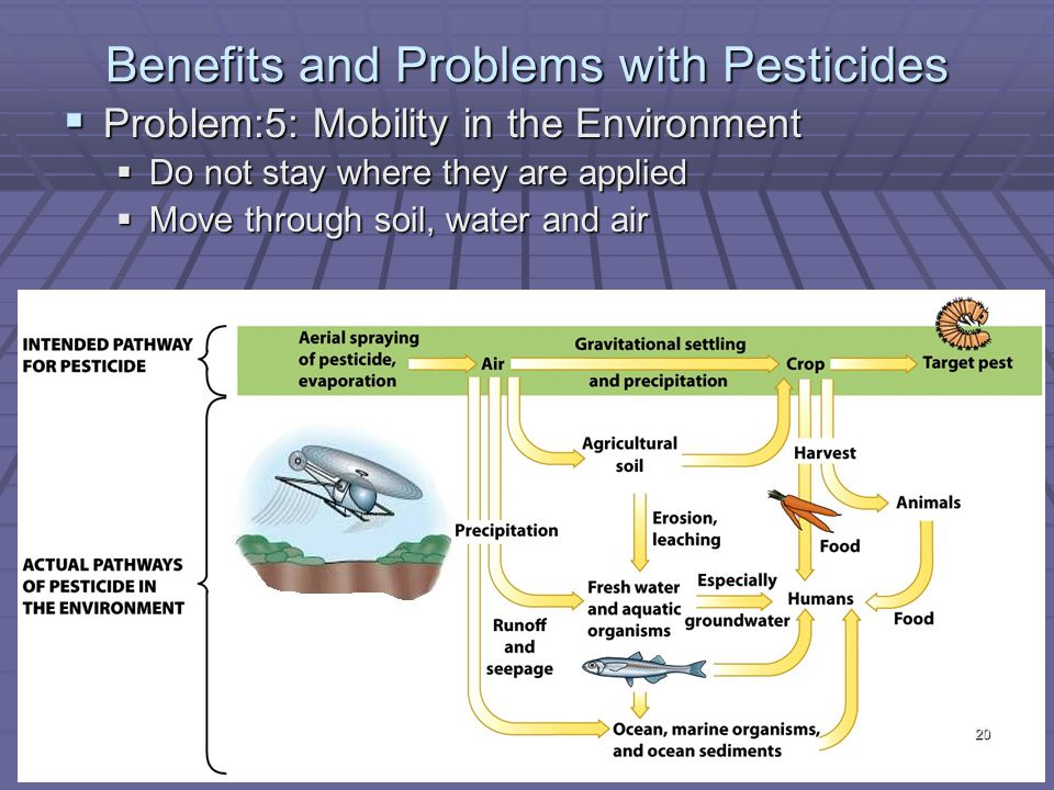 Benefits and Problems with Pesticides  Problem:5: Mobility in the Environment  Do not stay where they are applied  Move through soil, water and air