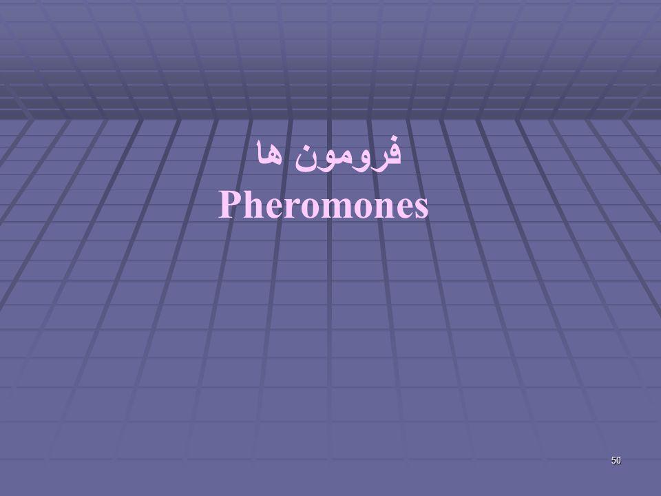 50 فرومون ها Pheromones