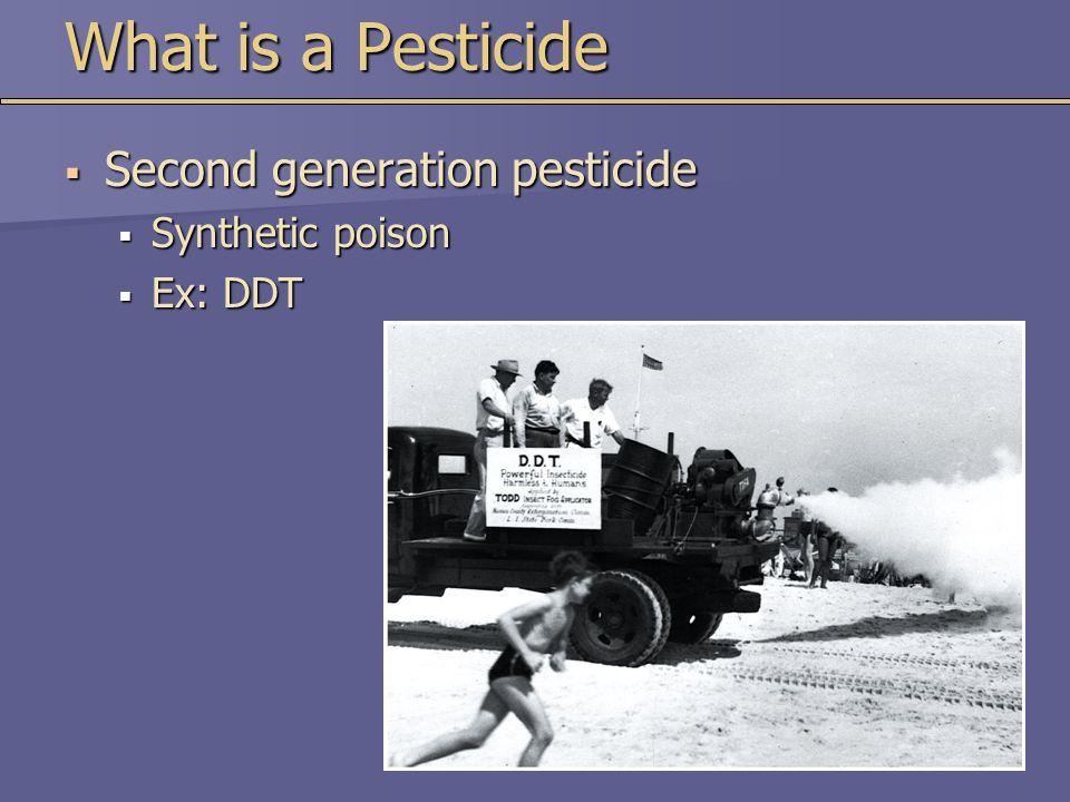 What is a Pesticide  Second generation pesticide  Synthetic poison  Ex: DDT
