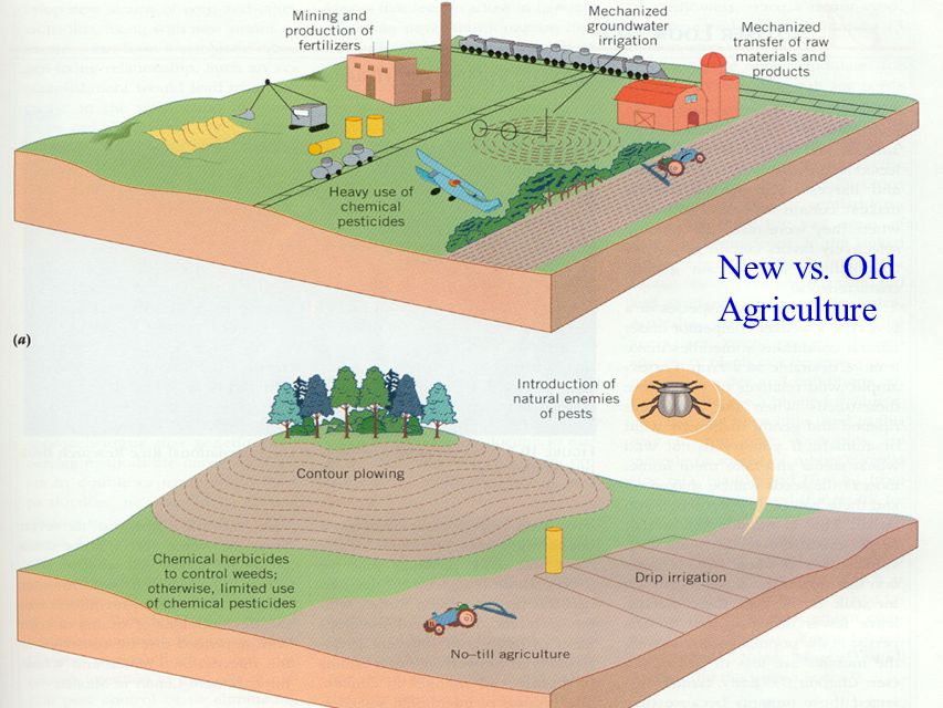 New vs. Old Agriculture