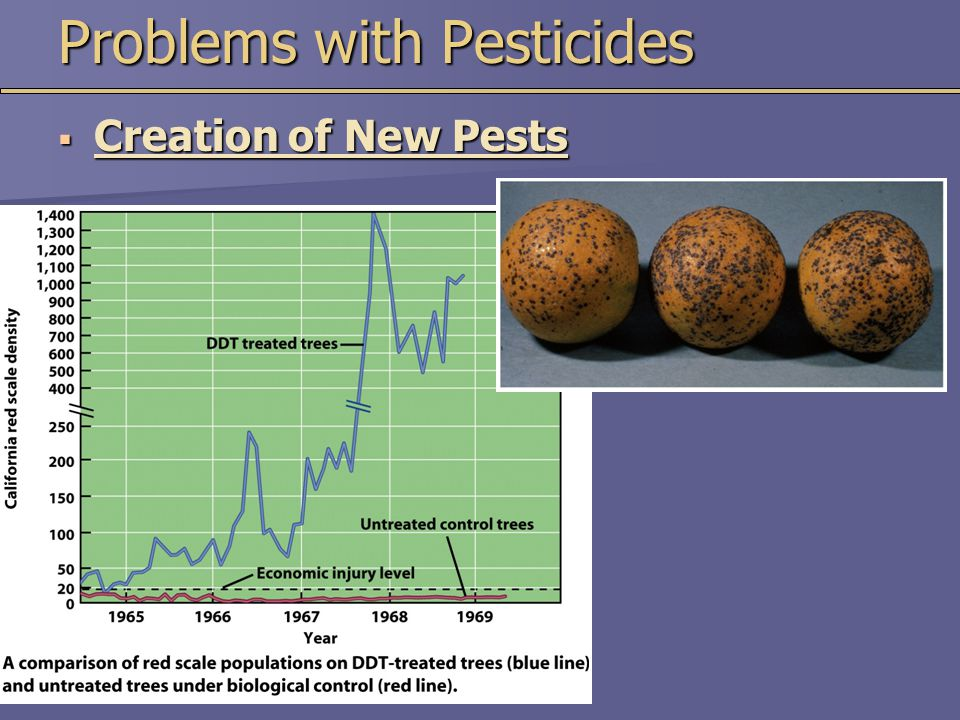 Problems with Pesticides  Creation of New Pests