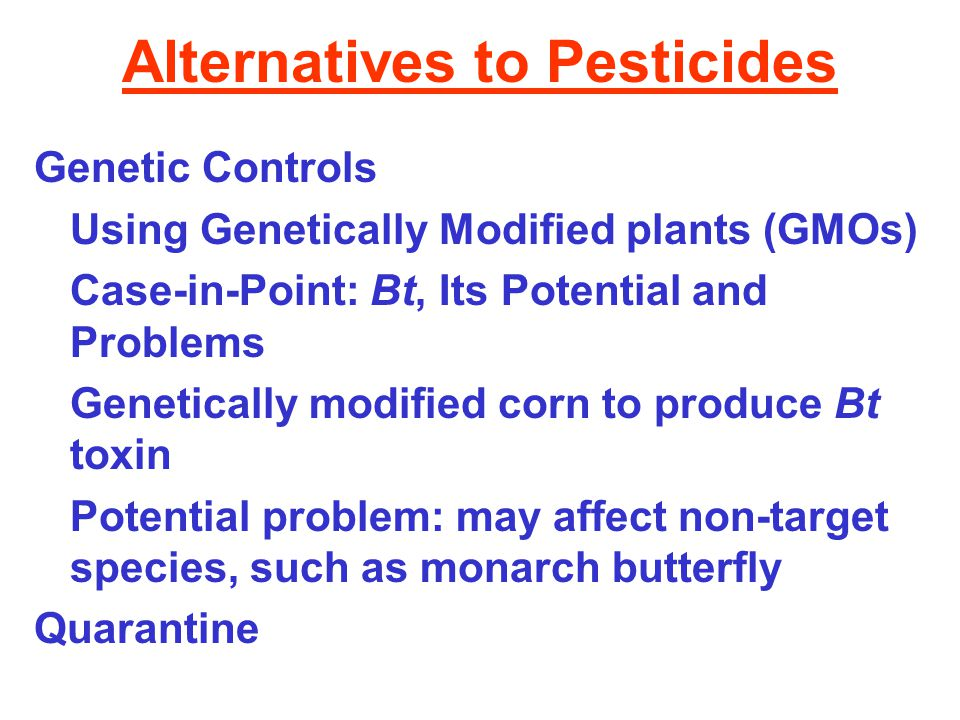 Alternatives to Pesticides Genetic Controls Using Genetically Modified plants (GMOs) Case-in-Point: Bt, Its Potential and Problems Genetically modified corn to produce Bt toxin Potential problem: may affect non-target species, such as monarch butterfly Quarantine