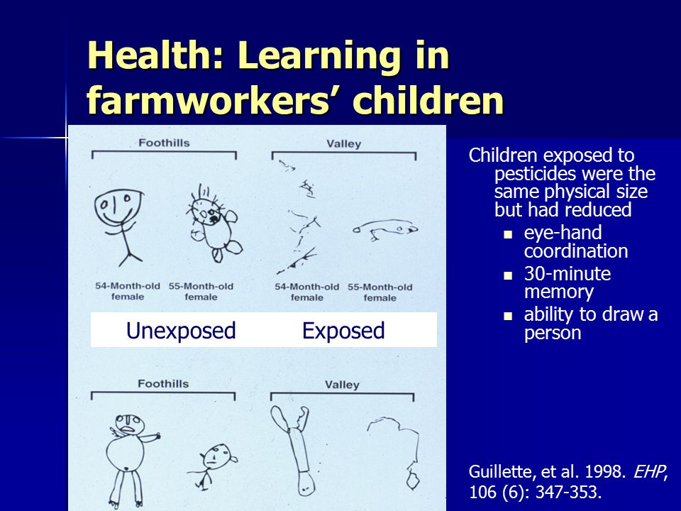 Health: Learning in farmworkers' children Children exposed to pesticides were the same physical size but had reduced eye-hand coordination 30-minute memory ability to draw a person Exposed Not exposed UnexposedExposed Guillette, et al.