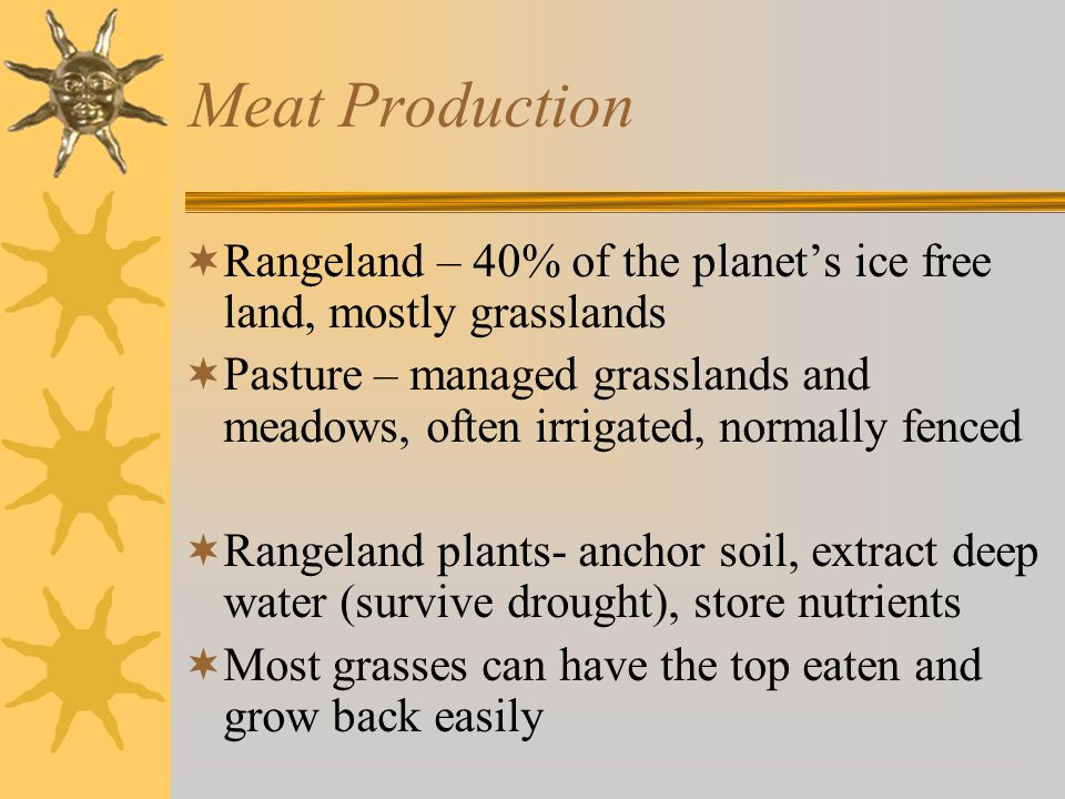 Meat Production  Rangeland – 40% of the planet's ice free land, mostly grasslands  Pasture – managed grasslands and meadows, often irrigated, normally fenced  Rangeland plants- anchor soil, extract deep water (survive drought), store nutrients  Most grasses can have the top eaten and grow back easily