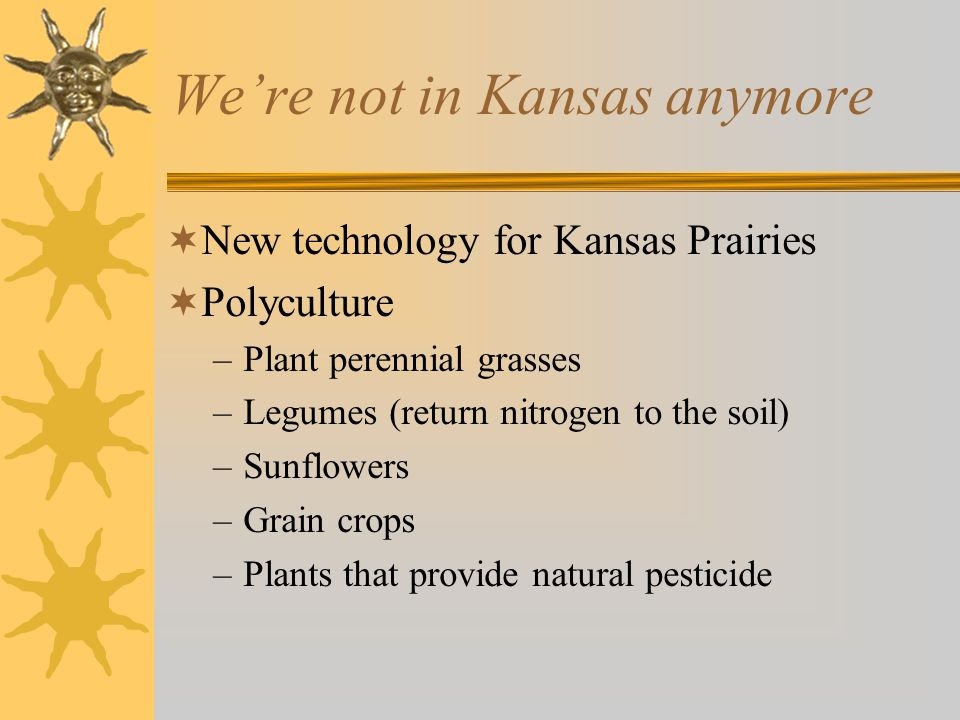 We're not in Kansas anymore  New technology for Kansas Prairies  Polyculture –Plant perennial grasses –Legumes (return nitrogen to the soil) –Sunflowers –Grain crops –Plants that provide natural pesticide