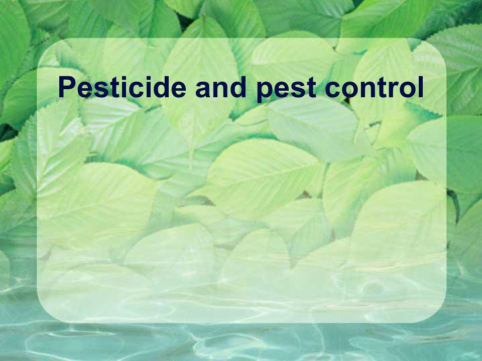 Pesticide and pest control