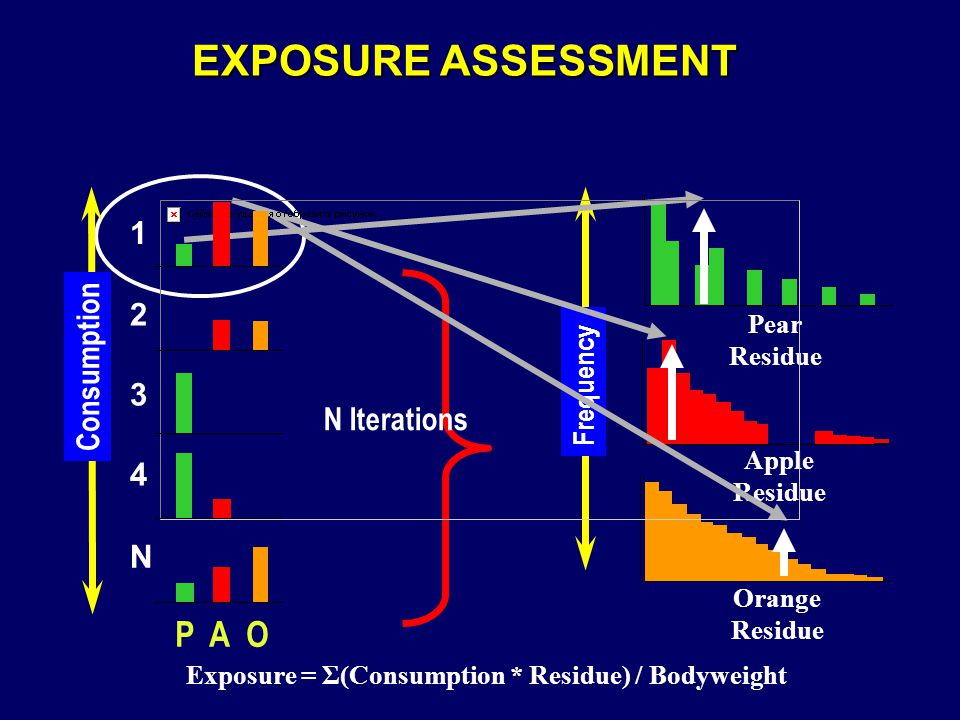 EXPOSURE ASSESSMENT N Iterations Frequency Pear Residue Apple Residue Orange Residue Exposure = Σ(Consumption * Residue) / Bodyweight Consumption P A O 2 1 N 4 3