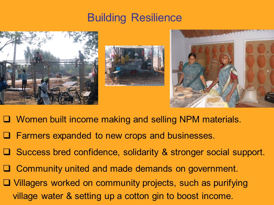Building Resilience  Women built income making and selling NPM materials.