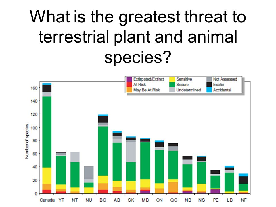 What is the greatest threat to terrestrial plant and animal species?