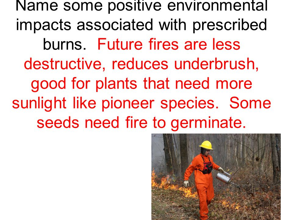 Name some positive environmental impacts associated with prescribed burns.