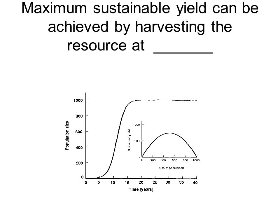 Maximum sustainable yield can be achieved by harvesting the resource at _______