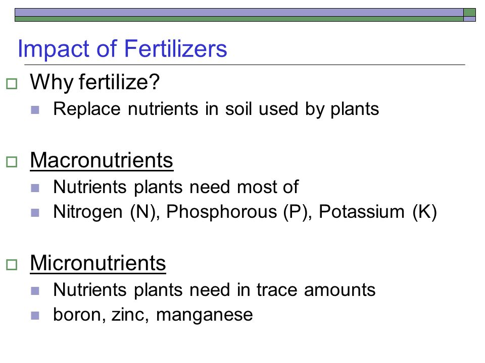Impact of Fertilizers  Why fertilize.
