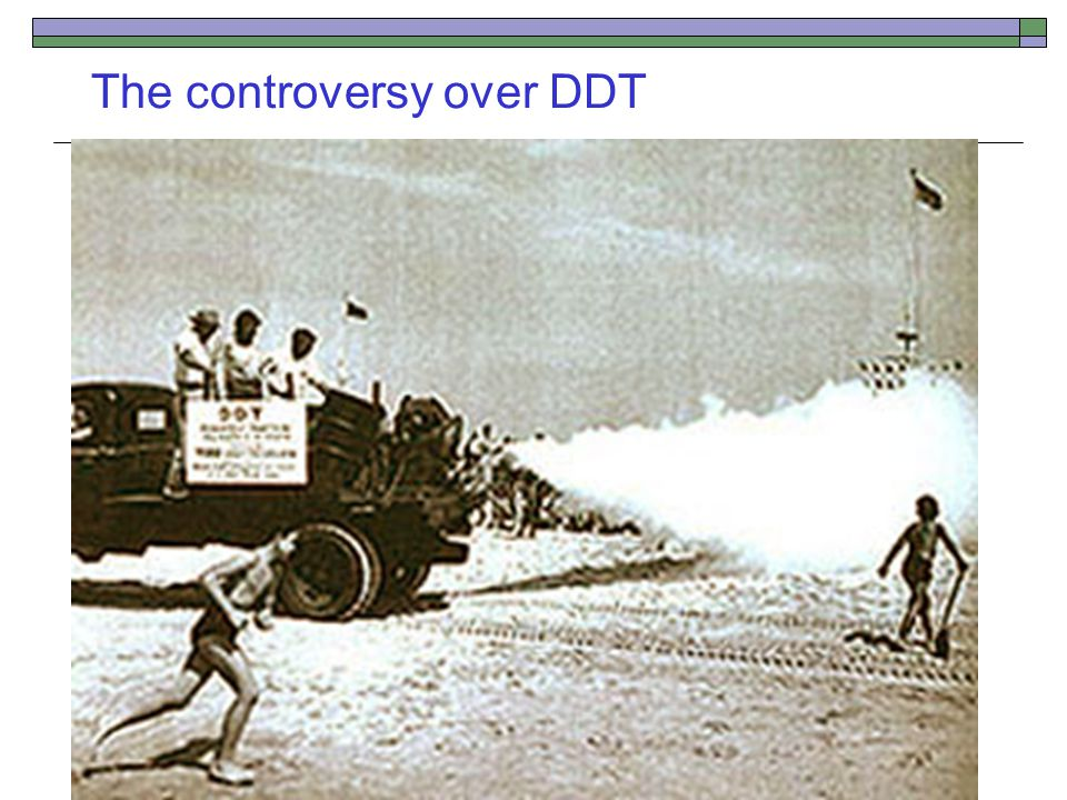 The controversy over DDT