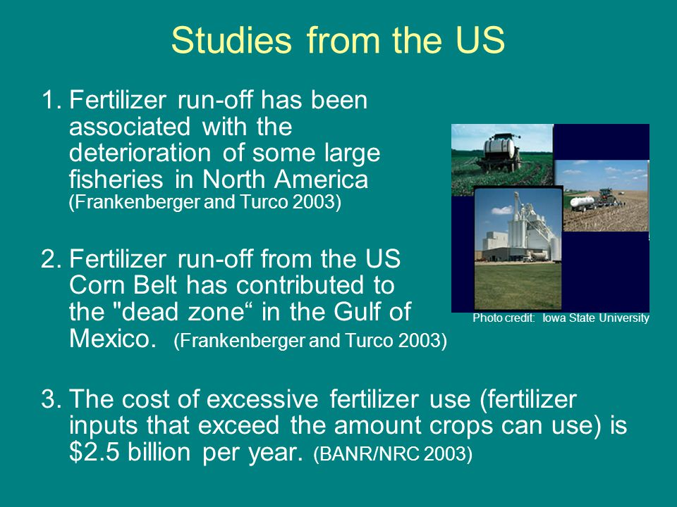 Studies from the US 1.Fertilizer run-off has been associated with the deterioration of some large fisheries in North America (Frankenberger and Turco 2003) 2.Fertilizer run-off from the US Corn Belt has contributed to the dead zone in the Gulf of Mexico.