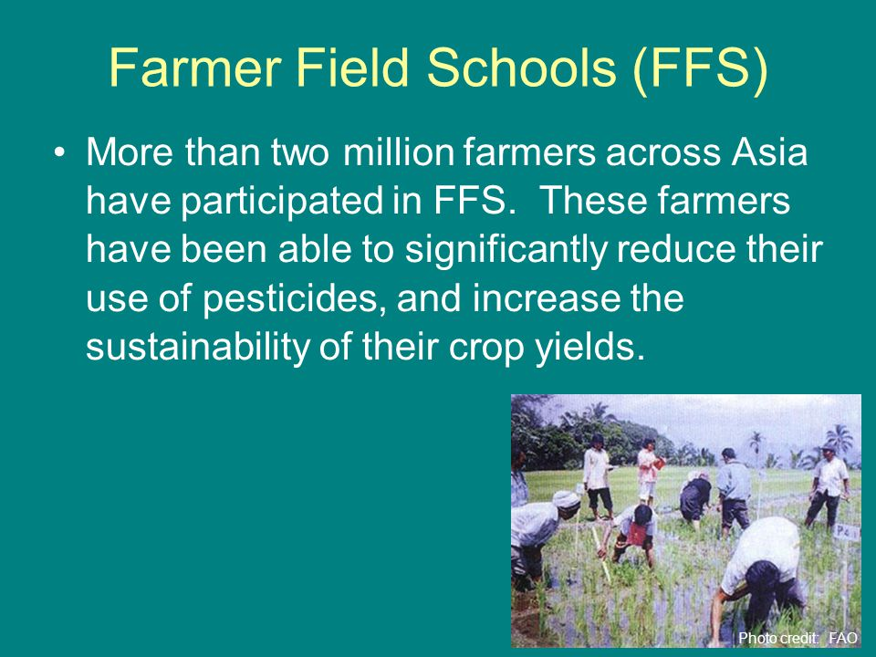 Farmer Field Schools (FFS) More than two million farmers across Asia have participated in FFS.