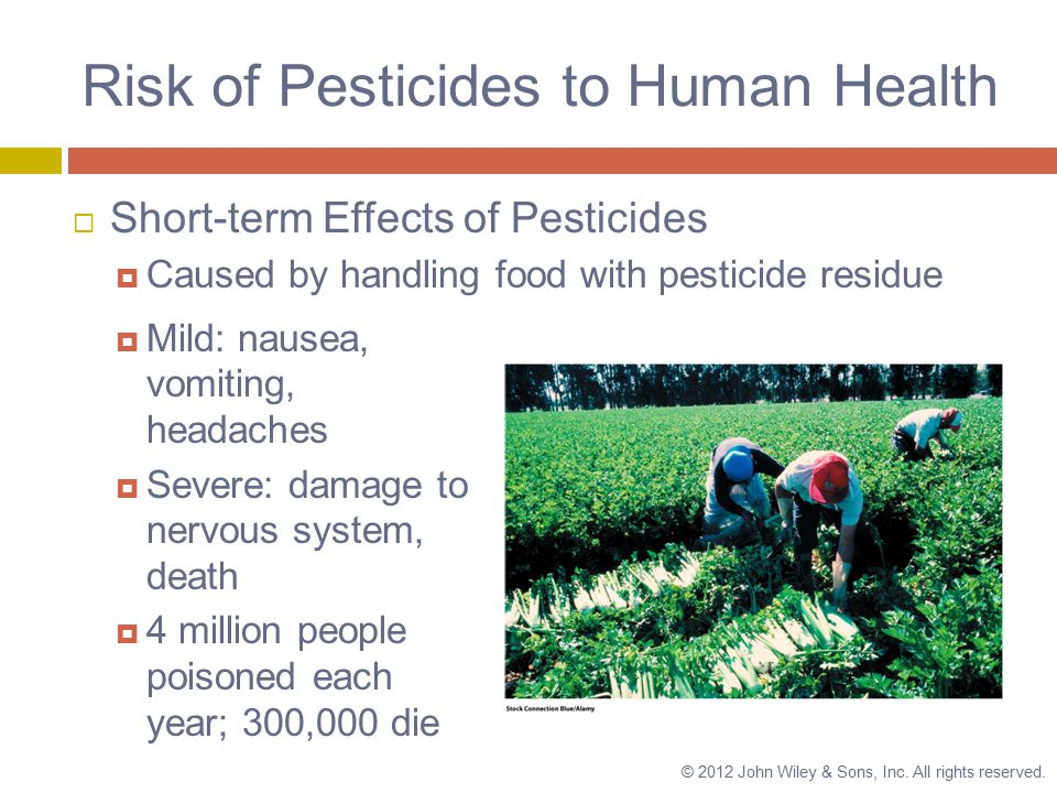 Risk of Pesticides to Human Health  Short-term Effects of Pesticides  Caused by handling food with pesticide residue  Mild: nausea, vomiting, headaches  Severe: damage to nervous system, death  4 million people poisoned each year; 300,000 die © 2012 John Wiley & Sons, Inc.