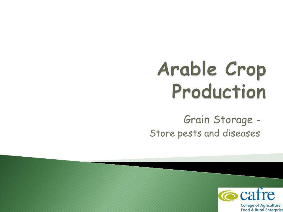 1 Grain Storage - Store pests and diseases