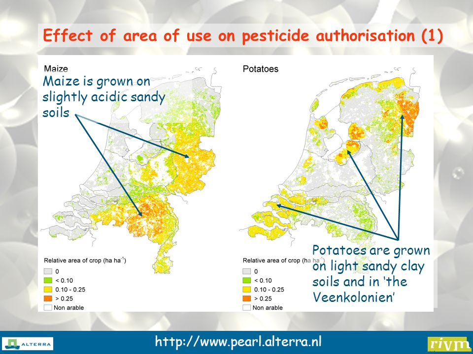 http://www.pearl.alterra.nl Effect of area of use on pesticide authorisation (1) Maize is grown on slightly acidic sandy soils Potatoes are grown on light sandy clay soils and in 'the Veenkolonien'