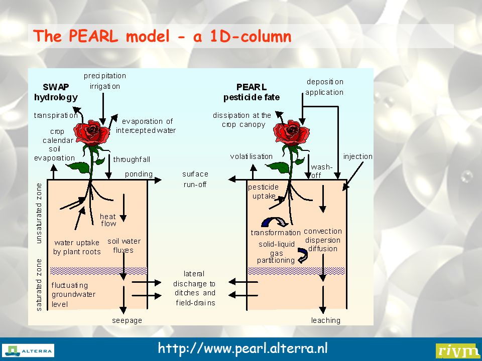 http://www.pearl.alterra.nl The PEARL model - a 1D-column
